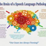 The Brain of an Speech Language Pathologist